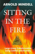 sitting-in-the-fire-large-group-transformation-through-diversity-and-conflict-copertina-1